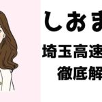 埼玉高速鉄道を全力で推す